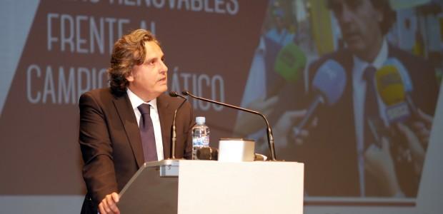 Miguel Ángel Martínez-Aroca, Presidente de Anpier